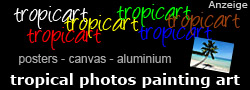 tropical photo art for posters and canvas